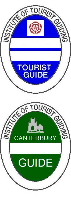 Blue Guide's Badge